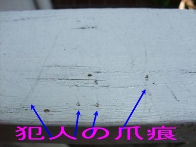 blog2010_09190003
