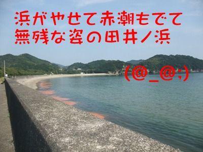 blog_10130016