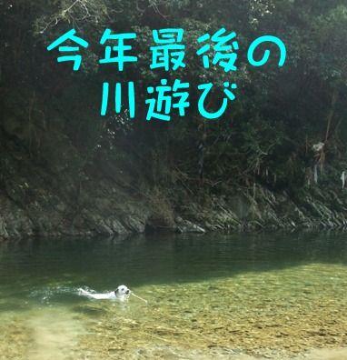 blog_10290003
