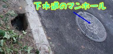 blog_11110001