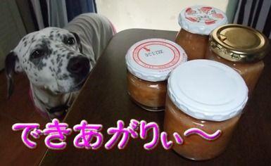 blog_11110015