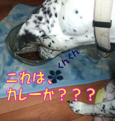 blog_11110014