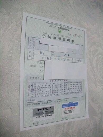 2011_11190006