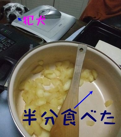 blog_11190001