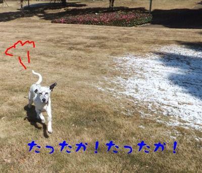 blog_12250047