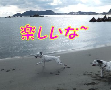 blog_0107_112309