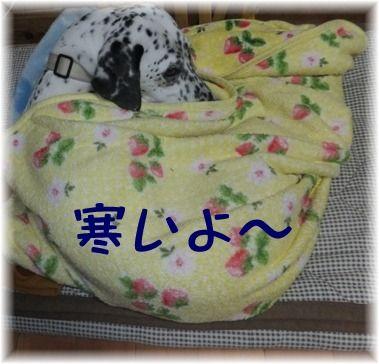 blog0102_120733