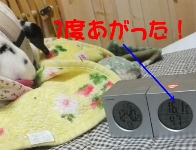 blog_0115_124458