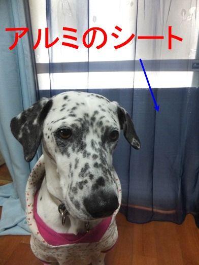 blog0115_154442
