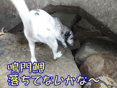 blog_0310_113452