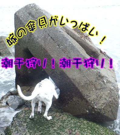 blog_0310_114941