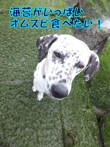blog_0310_114825