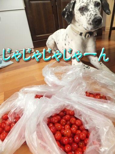 blog_0508_172941