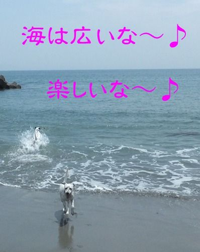 blog_0526_112805(1)
