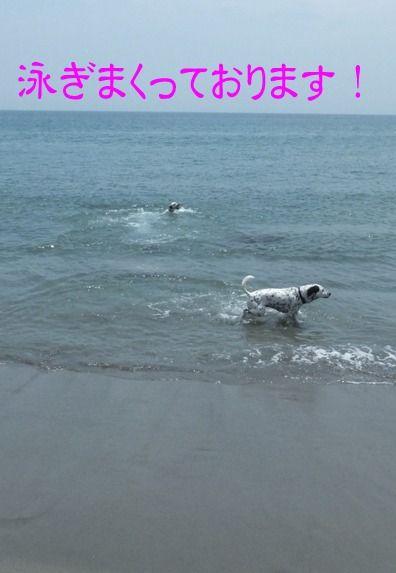 blog_0526_112829(4)