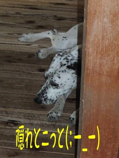 2012_0527_104037