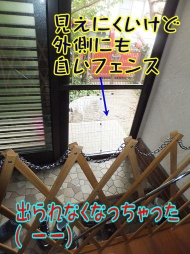 2012_0603_120000