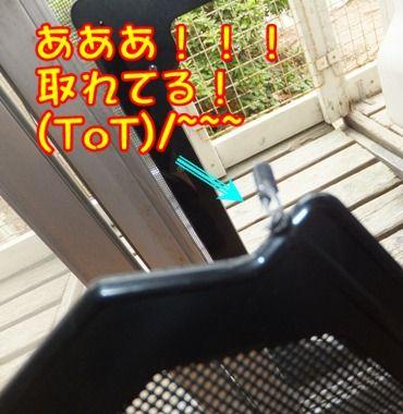 2012_0603_112859