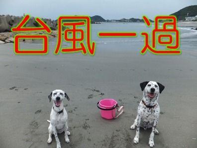 blog_0623_105736(1)