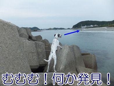 blog_0623_111938