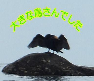 blog_0623_114243