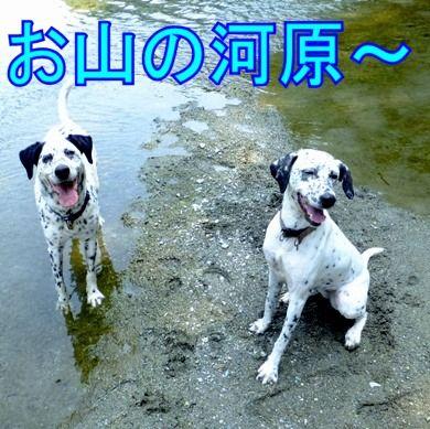 blog_0728_103447(1)