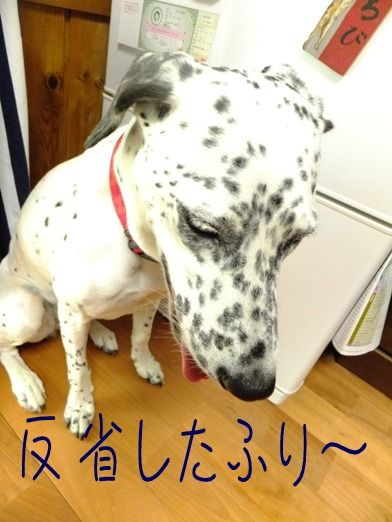 blog_0917_131047
