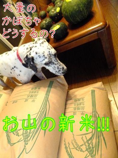 blog_0917_152051