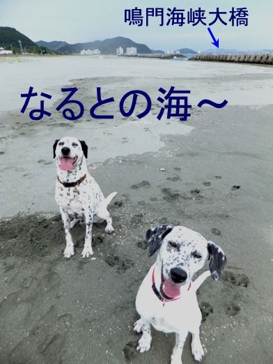 blog_1006_114131