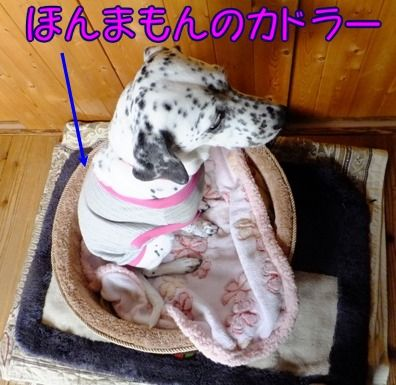 blog_1025_163319