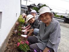 花の植えつけ3