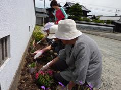 花の植えつけ1