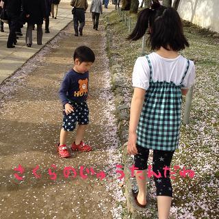 IMG_7673[1]桜のじゅうたん