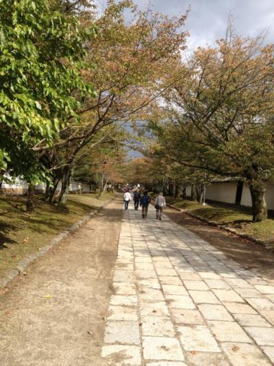 IMG_5032驢埼・蟇コ_convert_20121101160924