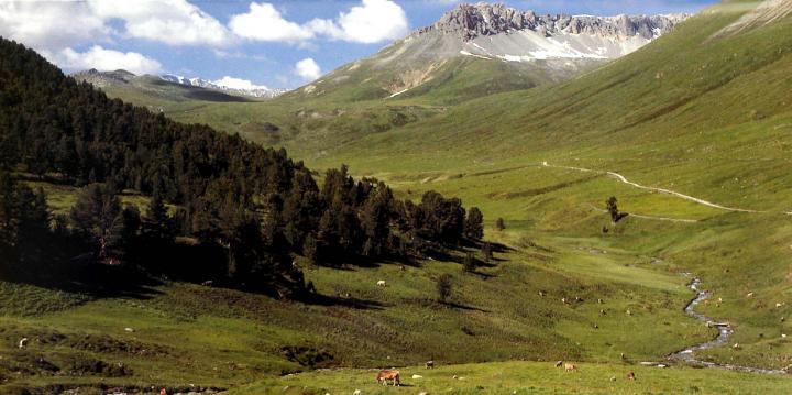 国立公園0002_convert_20130909220636