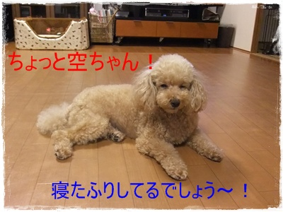 2012_0711_215857-DSCF6134.jpg