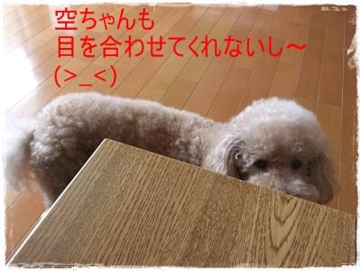 2012_0806_120934-DSCF6354.jpg