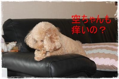 2012_0812_165625-IMG_7593.jpg