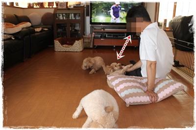2012_0812_165808-IMG_7601.jpg