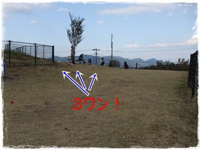 2012_1103_152457-DSCF6707.jpg