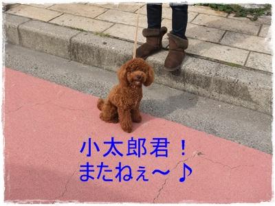 2012_1104_114617-DSCF6780.jpg
