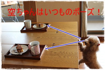 2012_1113_153854-IMG_8191.jpg