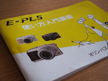 P1150480.jpg