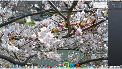 iMac2011ML_03