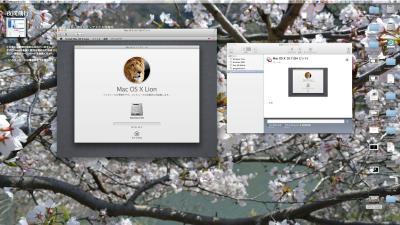 Lion241015_02