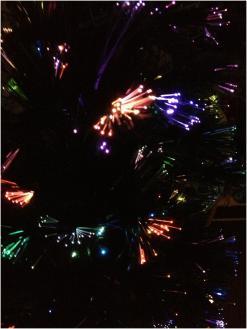 クリスマス241225
