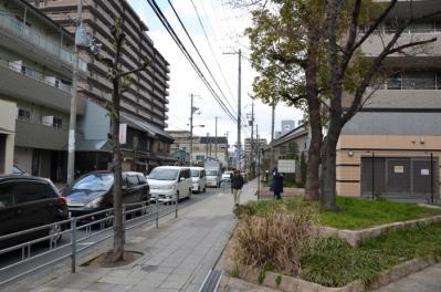 平野2_240401_19