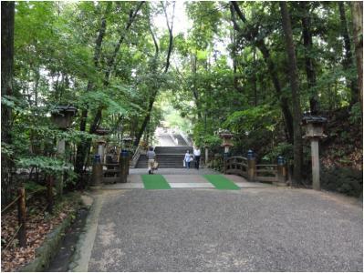 桜井240814_03