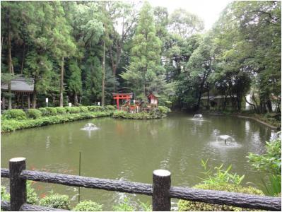 桜井240814_11