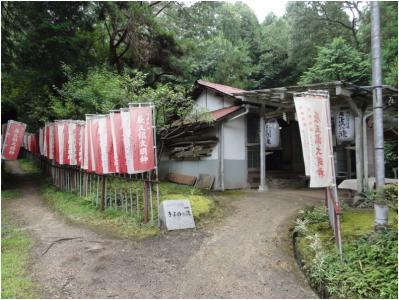 桜井240814_13